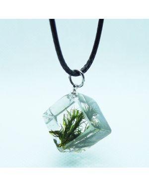 Moss cube pendant